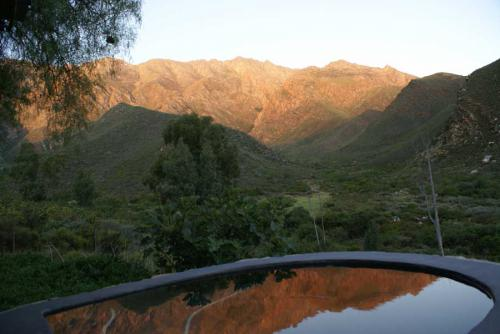 15-Pepper-Tree-pool-sundowners