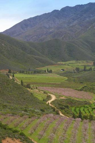 50-Farm-view-up-valley