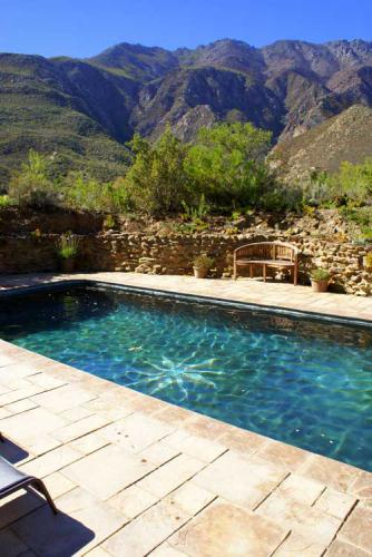 9-Fig-Tree-Pool-and-view